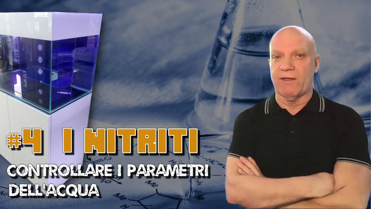 Copertina video I nitriti